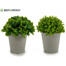 wholesale Food & Beverage: gray flowerpot short leaves 2 models