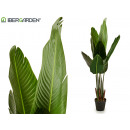 wholesale Artificial Flowers: plant straight stems leaves tip 120 cm