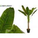 pianta foglie grandi 1 fusto 125 cm