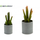 wholesale Artificial Flowers: flowerpot cactus small colors 2 times assorted
