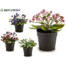 wholesale Artificial Flowers: plant black flower petals, 4 times assorted