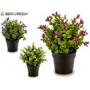 plant leaves and petals, 3 times assorted
