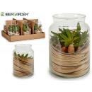 künstliches Pflanzenglas