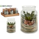 grünes Pflanzenglas