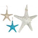 grande étoile de mer en polyrésine, couleurs 3 foi