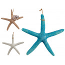 large fine polyresin sea star, 3 times assorted