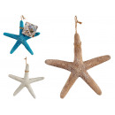 fine polyresin sea star med, 3 times assorted
