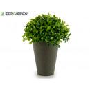 runde Pflanze Kunststoff Zementtopf