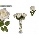 white rose branch