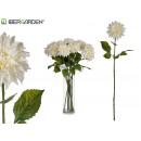 Zweigblume weiße Dahlie