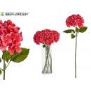 tak bloem hortensia groot fuchsia