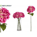 lila großer Hortensienblumenzweig