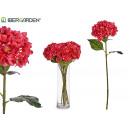tak bloem hortensia fuchsia
