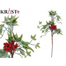 wholesale Food & Beverage: branch with berries and leaves