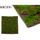 wholesale Cremes: green wadding moss with soil