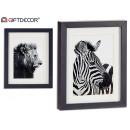 groothandel Foto's & lijsten: foto geassorteerd frame leeuw-zebra zwart 23x28