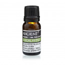 wholesale Room Sprays & Scented Oils: 10 ml Eucalyptus Essential Oil
