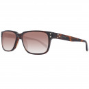 Converse Sunglasses Rangefinder Tortoise 56