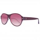 Converse Sunglasses Well Played Purple / Glitter 5