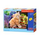Puzzle 180 elementów Ginger Kitten