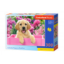 PUZZLE PREMIUM 300 Labrador puppy in Pink Box