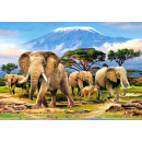 Puzzle 1000 elements: Kilimanjaro Morning
