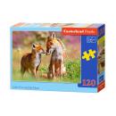 éléments de casse-tête 120 Little Fox et sa mère