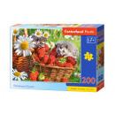 Puzzle 200 elementów STRAWBERRY DESSERT