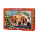 wholesale Puzzle: Puzzle 500 items: Golden Innocence