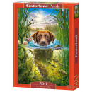 Puzzle 500 items of Swimming Dog