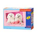 120 Puzzle elementos: Dos perritos en color de ros