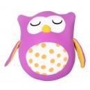 Metamorphosis Owl