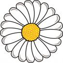 hurtownia Srodki & materialy czyszczace: Giggle Beaver Flower - Ręcznik kąpielowy 150x150 c