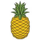 Giggle Beaver Pineapple - Tea and kitchen towel -