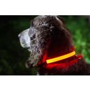 IA LED Light Up Pet Collar - Dog Collar - M / L