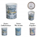 candle glass jungle, 3- times assorted