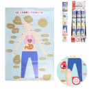 wholesale Toys: human body 60x40cm scratch poster