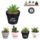 wholesale Plants & Pots: artificial plant pot colors, 4- times assorted