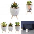 wholesale Garden & DIY store: artificial plant pot cement on foot, 3-times as