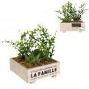 artificial plant garden family
