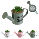 wholesale Garden Equipment: artificial plant watering can metal, 3- times asso