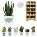 artificial plant rack m120, 6- times assorted