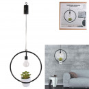 hanging decorative circle led plant garden