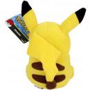 https://evdo8pe.cloudimg.io/s/resizeinbox/400x400/https://www.dinotoys.nl/resize/T18587a.jpg/0/1100/True/Pokemon-pluche-Pikachu-22cm-2.jpg