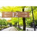 Banner 12,5 år kopparjubileum - 180 cm