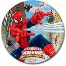 wholesale Party Items: Spider-Man Warriors plate 8 pieces