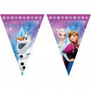 mayorista Articulos de fiesta: Garland frozen luces - de 2 metros