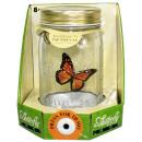 Großhandel Geschäftsausstattung: Butterfly collection - im offener Karton