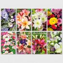 Glückwunschkarte Grußkarte Geburtstagskarte Blumen