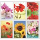 Glückwunschkarten Grußkarten Karten banko Blumen 1